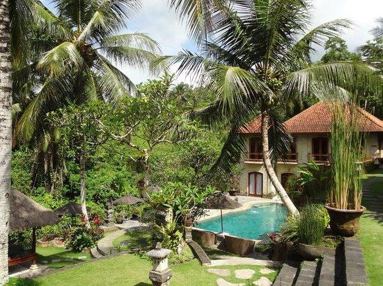 Hotel Villa-Ubud:                   widok z restauracji
