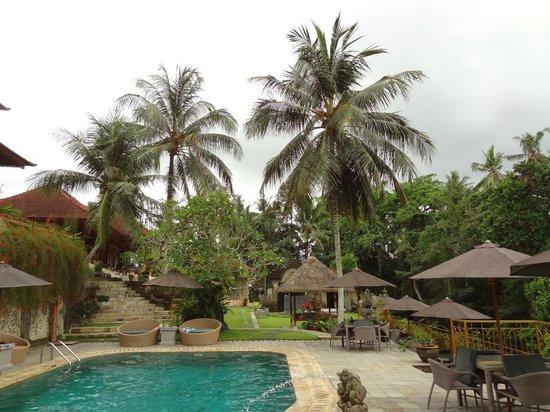 Hotel Villa-Ubud:                   ogród