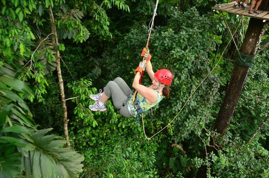 Canopy Safari:                   Tarzan swing