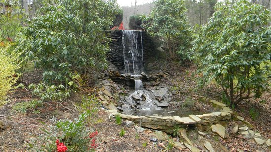 Asheville Cabins of Willow Winds:                                                       Mini waterfall down a path from Chris's ca