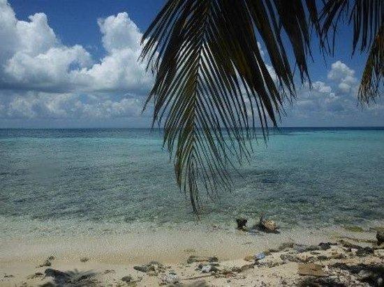 Goff's Caye:                   paradise