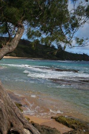 Kauai Photo Tours:                   North shore