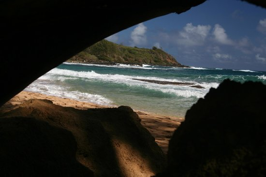 Kauai Photo Tours:                   North shore, shot this through a hole in the tree trunk, looks like a cave