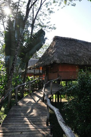 Cotton Tree Lodge:                   Private Cabanas