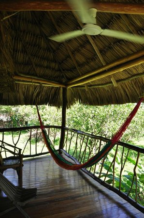 Cotton Tree Lodge:                   Balcony and Hammock