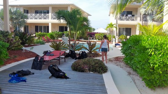 The Club at Little Cayman: Pool area