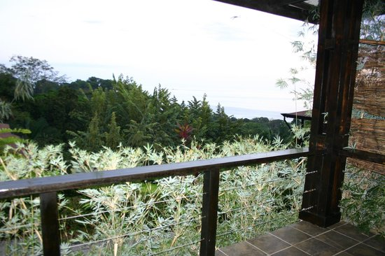 TikiVillas Rainforest Lodge & Spa:                   View from our porch.