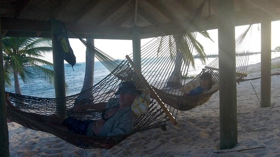 The Club at Little Cayman: Hammocks in front of the condos