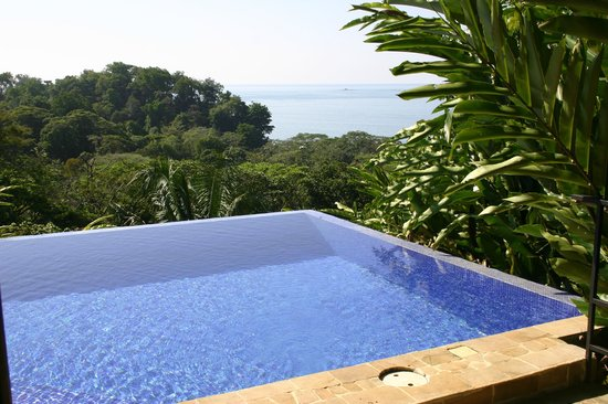 TikiVillas Rainforest Lodge:                   The pool overlooks the Pacific-it is L-shaped.