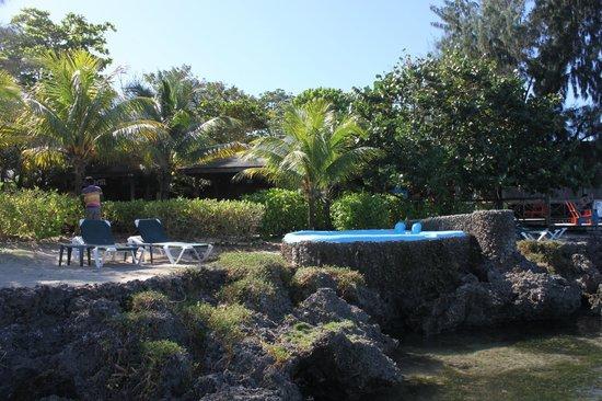 Las Rocas Resort & Dive Center:                   Vistas desde el mar