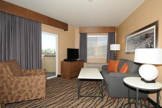 Comfort Inn & Suites Market Place Great Falls : Balcony Suite - City Views