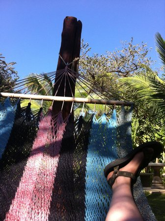 Harbor Reef Surf Resort:                   hammock time!
