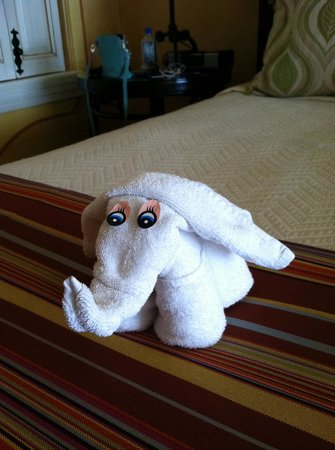 Hilton Los Cabos Beach & Golf Resort:                   towel created animal for your bed each day