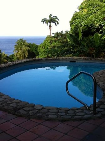 Stonefield Villa Resort:                   Private pool under the palm trees