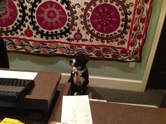 Canary, a Kimpton Hotel:                   Riley