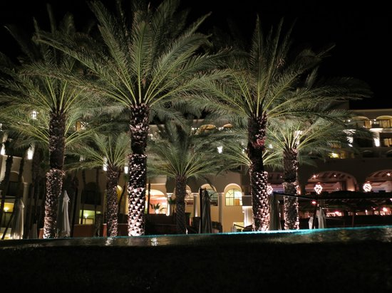 Hilton Los Cabos Beach & Golf Resort:                   The hotel at night.
