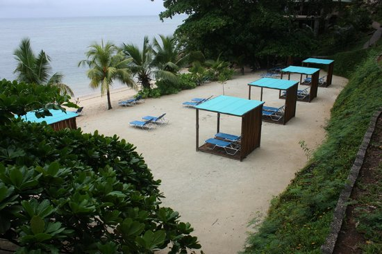 Coco de Mer - Black Parrot Suites:                   Beach canopies