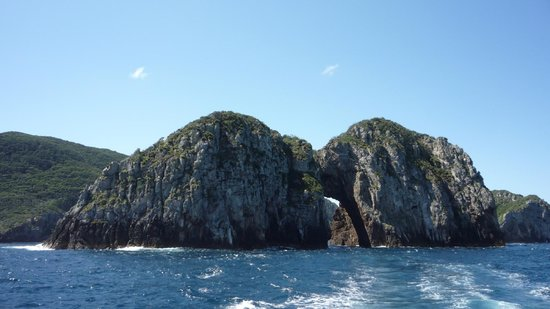 Perfect Day Ocean Cruise:                   Sailing around the marine reserve