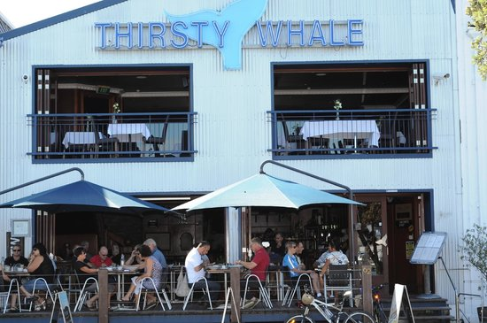 The Thirsty Whale Restaurant and Bar: Fron Deck at Thirsty Whale