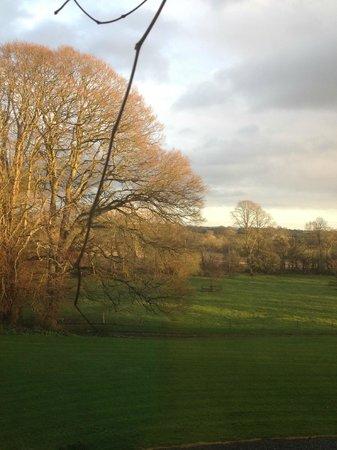 Glenlohane:                   Another lovely sunrise                 