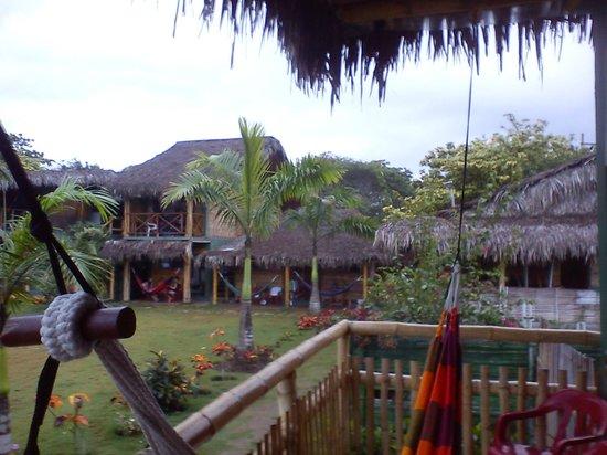 Hostal Kundalini:                   desde la habitacion