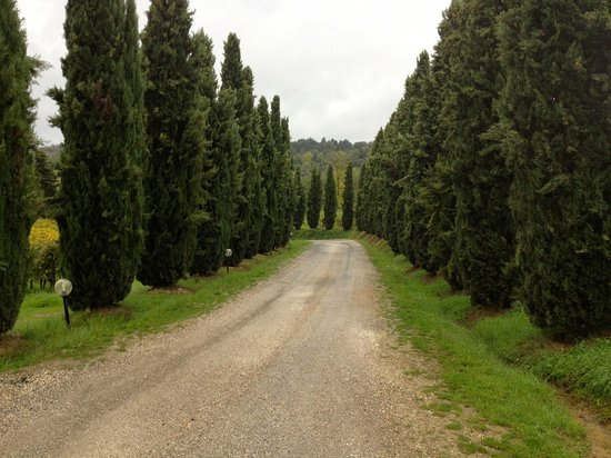 Agriturismo Guardastelle:                   the driveway