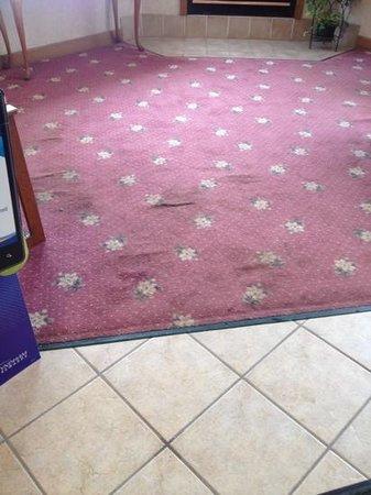 Days Inn Hinckley:                   stained lobby carpet