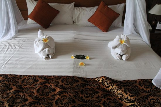 Saren Indah Hotel:                   Notice the bump in the middle of the bed?