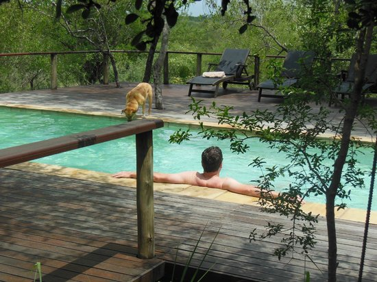 Toro Yaka Bush Lodge:                   Relaxing with Nawadee