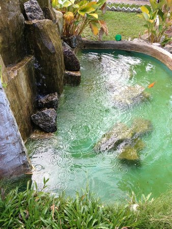 Pangkor Sandy Beach Resort:                   Mini waterfall feature