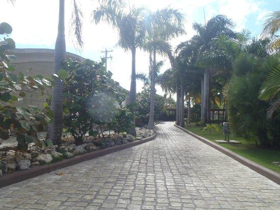 IFA Villas Bavaro Resort & Spa照片