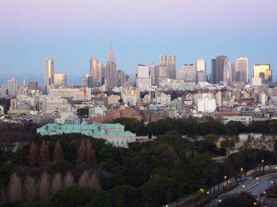 Hotel New Otani Tokyo Garden Tower:                   morning