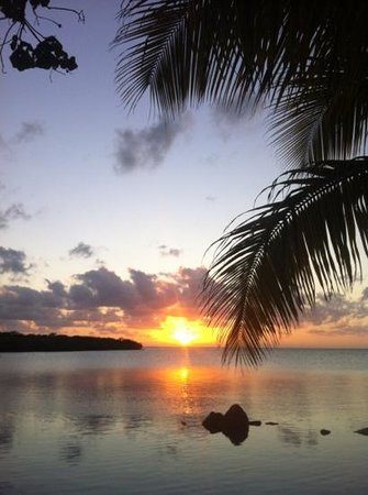 Lime Tree Bay Resort:                   sunset from the resort beach