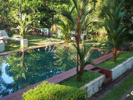 Dewalokam Farmstay Retreat:                                     Fresh water pool in the garden