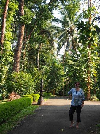 Dewalokam Farmstay Retreat:                                     Glorious gardens down to the river