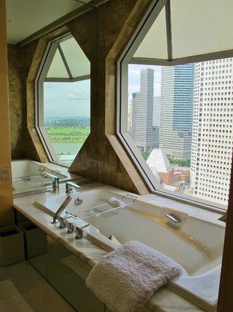 新加坡麗嘉登美年酒店照片