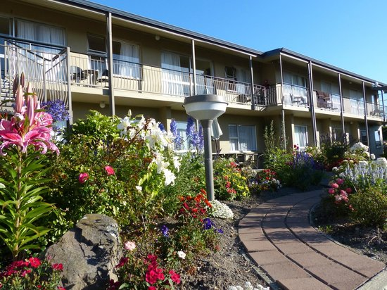 Taylors Motel: Exterior and Garden