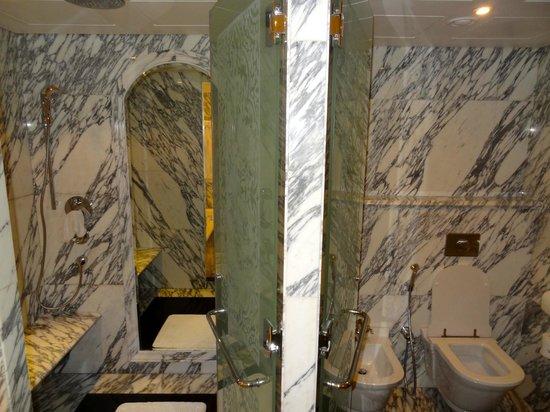 The Regency Hotel Kuwait : Shower room