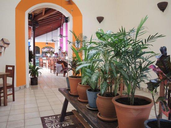 Cafe de Los Suenos : Entrance to cafe