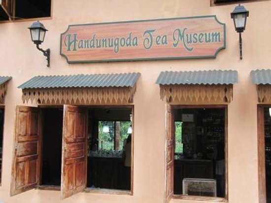 Handunugoda Tea Estate:                   Tea museum
