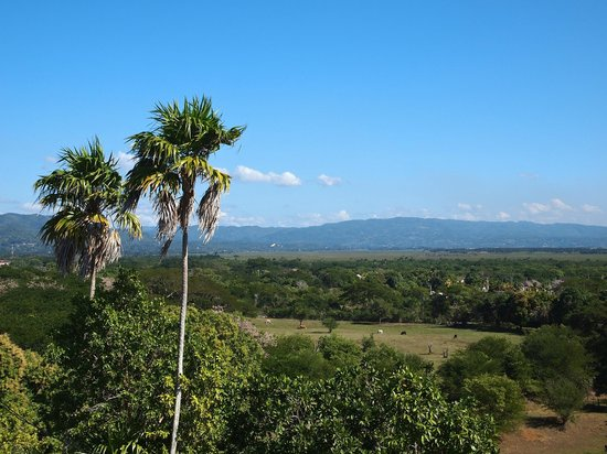 The view from Ashton Great House and Hotel in Black River, Jamaica.