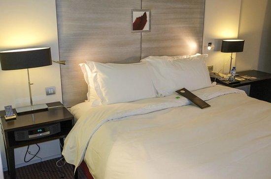 Sofitel Brussels Europe:                   Room
