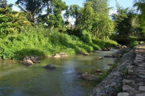 River Picture Of Saujana Janda Baik Janda Baik