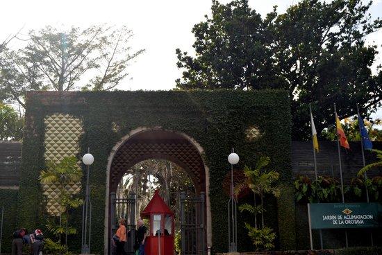 Entrada fotograf a de jard n bot nico puerto de la cruz for Jardin botanico costo entrada