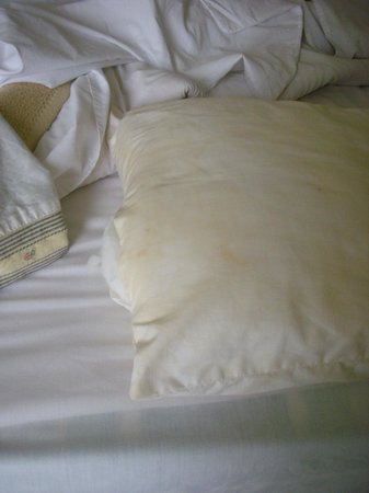 Amira Divers Inn:                   Sweat on the pillows
