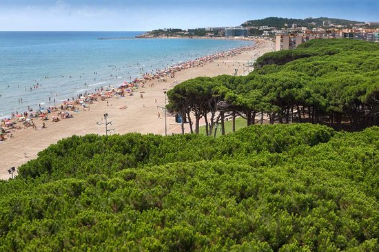 platja de la pineda picture of vila seca costa dorada tripadvisor. Black Bedroom Furniture Sets. Home Design Ideas