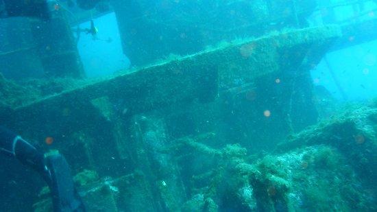 Submares:                   barco boreas