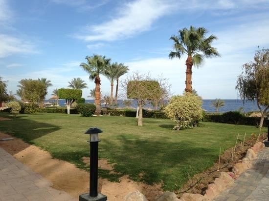 Renaissance Sharm El Sheikh Golden View Beach Resort:                   gardens