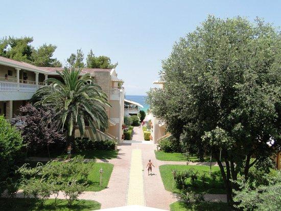 Potidea Palace Hotel:                   вид с панорамного балкона, семейный номер