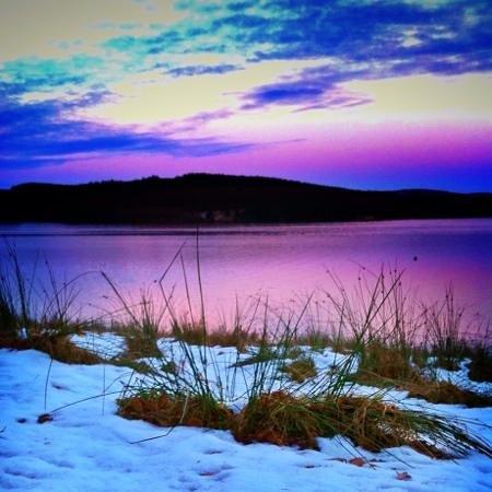 Kielder Lodges:                   winter at Kielder